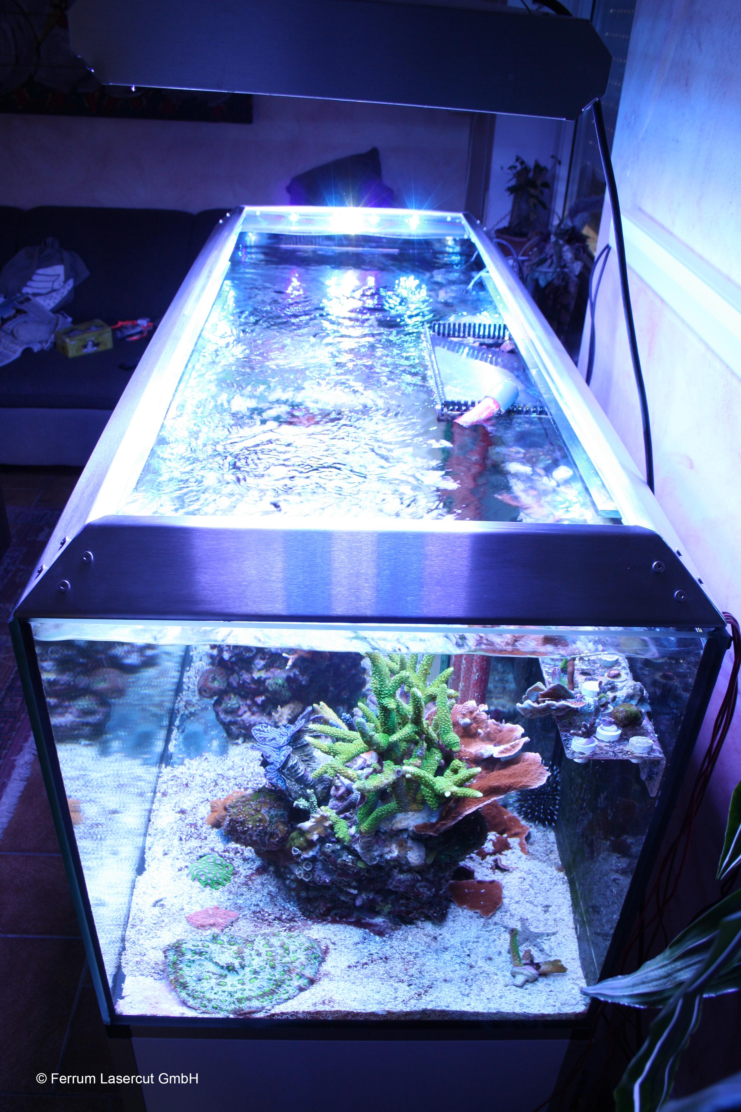 Aquarium abdeckung ferrum lasercut gmbh berlin for Aquarium abdeckung