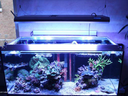 Aquarium Abdeckung